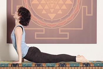 ANANDA PUR | vinyasa yoga